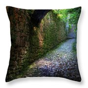 If Stones Could Talk Throw Pillow
