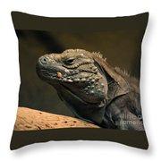 Iguana-7374 Throw Pillow