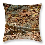 Iguana On A Trail In Manuel Antonio National Preserve-costa Rica Throw Pillow