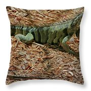 Iguana With A Smile Throw Pillow