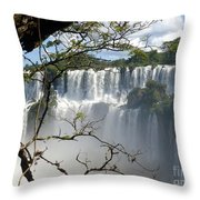 Iguazu Falls II Throw Pillow