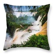 Iguazu Natural Wonder Throw Pillow