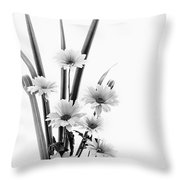 Ikebana Daisies Throw Pillow