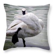 #iknowkungfu Throw Pillow