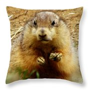 I'll Get You My Pretty Throw Pillow