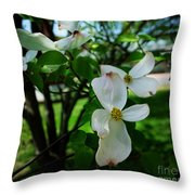 Illinois Capitol Dogwood Throw Pillow