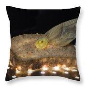 Illuminated Bread Throw Pillow