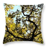 Illuminated Oak Tree Throw Pillow