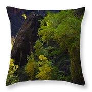 Illuminated Shrub Throw Pillow