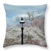 Illuminating Blossoms Throw Pillow