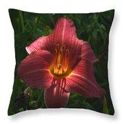 Illumination Throw Pillow