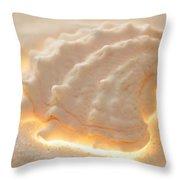 Illumination Series Sea Shells 16 Throw Pillow