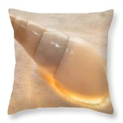 Illumination Series Sea Shells 4 Throw Pillow