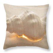 Illumination Series Sea Shells 5 Throw Pillow
