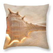 Illumination Series Sea Shells 6 Throw Pillow