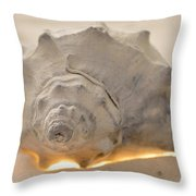 Illumination Series Sea Shells 7 Throw Pillow