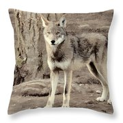 Illusion Of A Wolf Throw Pillow