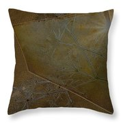 Illusions Throw Pillow