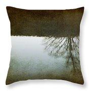 Illusions Of Autumn Throw Pillow