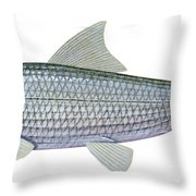 Illustration Of A Bonefish Albula Throw Pillow by Carlyn Iverson