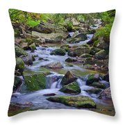 Im Bodetal Throw Pillow