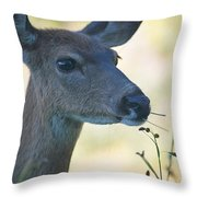 I'm Eating Here Throw Pillow