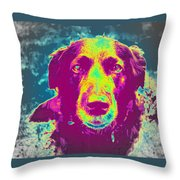You Are In My Dreams, Am I In Yours  Throw Pillow