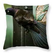 I'm Just Gonna Have One Of These Throw Pillow