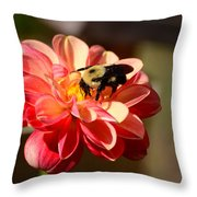 I'm On The New Pollen Diet Throw Pillow