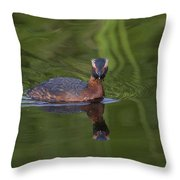 I'm Reflecting Throw Pillow