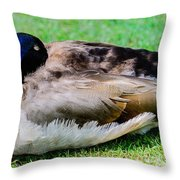I'm So Tired Throw Pillow