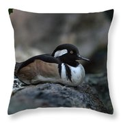 Hooded Merganser Throw Pillow