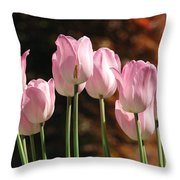Images Of Spring Throw Pillow