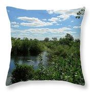Images Of The Pantanal Throw Pillow