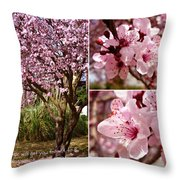 Imagination Will Take You Throw Pillow