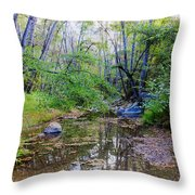 Imagine Us Together Here Throw Pillow