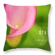 Imagined Throw Pillow by Darren Fisher
