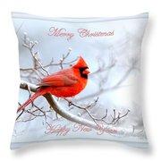 Img 2559-25 Throw Pillow