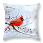 Img 2559-27 Throw Pillow