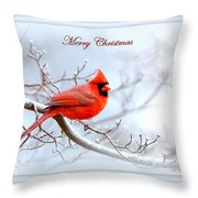 Img 2559-29 Throw Pillow