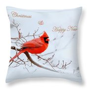 Img 2559-32 Throw Pillow