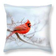 Img 2559-35 Throw Pillow