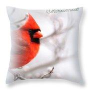 Img 2559-40 Throw Pillow