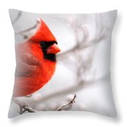 Img 2559-5 Throw Pillow