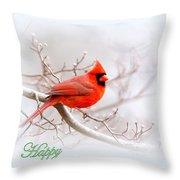 Img 2559-6 Throw Pillow