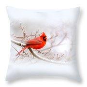 Img 2559-7 Throw Pillow