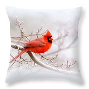 Img_2559-8 - Northern Cardinal Throw Pillow