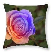Img231 Throw Pillow
