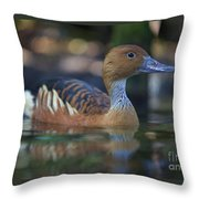 Img_8931 Fulvous Whistling Duck Throw Pillow