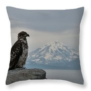 Immature Eagle And Alaskan Mountain Throw Pillow